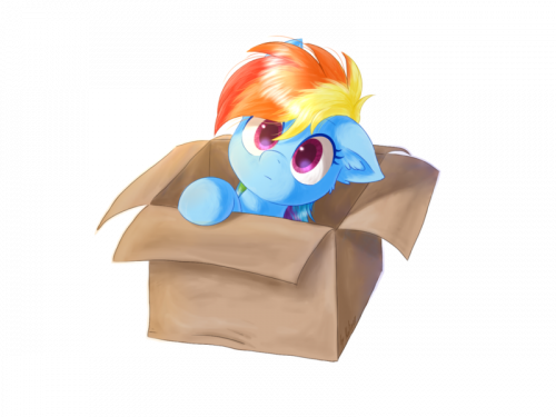 The Box pon