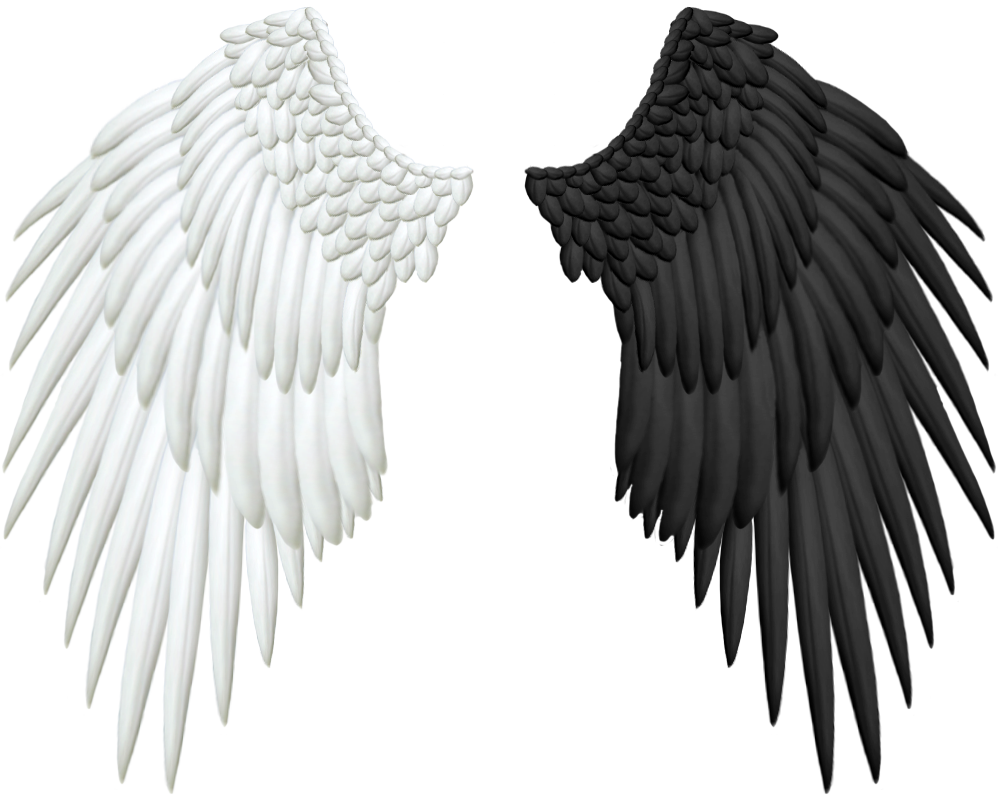 right wings faux concern - 998×796