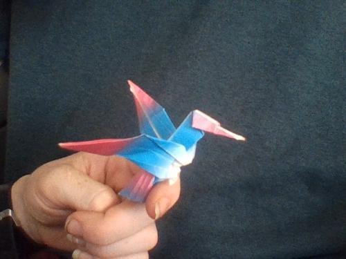 My hummingbird Friend