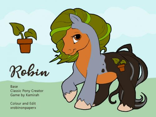 Robin the Earth Pony - Reference