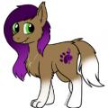 Stella song  the wolf/ pony hybrid
