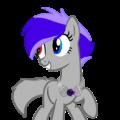 Symphony stars the wolf/ pony hybrid