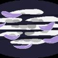 Moona Blossoms